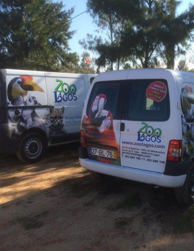 Zoo de Lagos - Decoração de Viaturas - Vehicle Decor